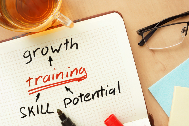 Employee training, growth, skill, potential, employees, high-quality employees, worker, workers, team member, business training