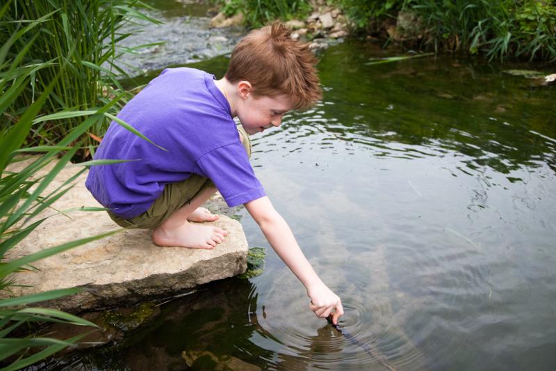 Child, creek, water, river, nature, environment, sustainability, elementary school, stream,