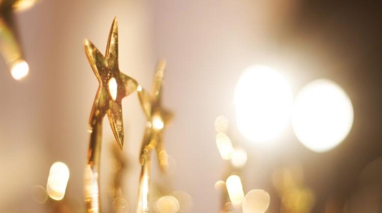 Trophy, star, award, gold, awarding, win, winning, recognizing, leader.