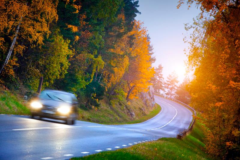 car, fall, autumn, rain, fall weather, leaves, wet roads, driving