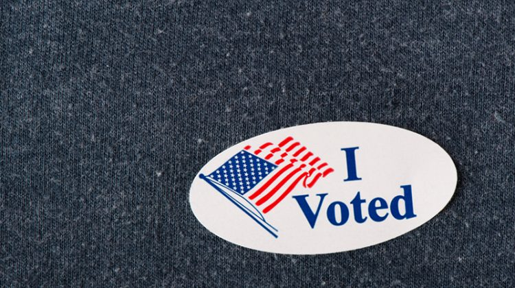 I voted, I voted sticker, vote, early voting, sticker, fabric, navy blue, american flag