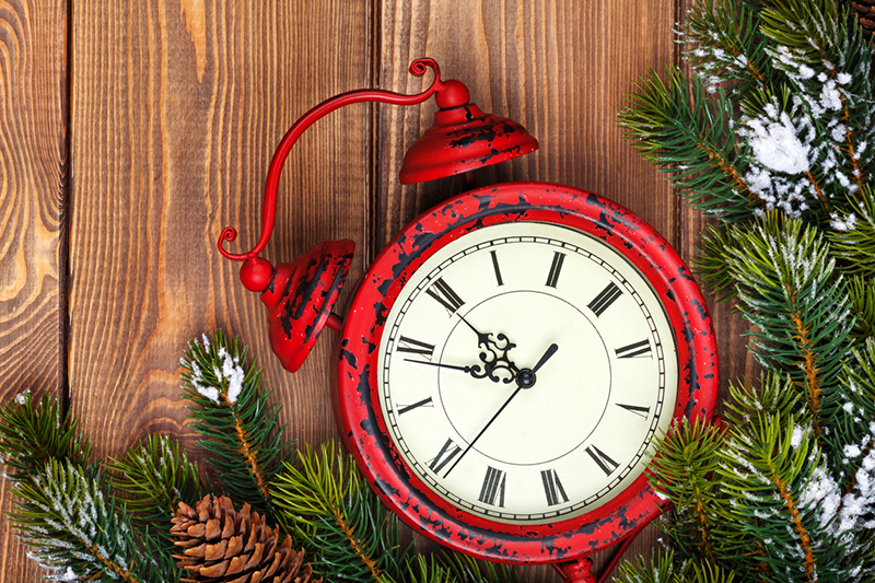 clock, time, time management, holidays, fir tree, pinecones, alarm clock