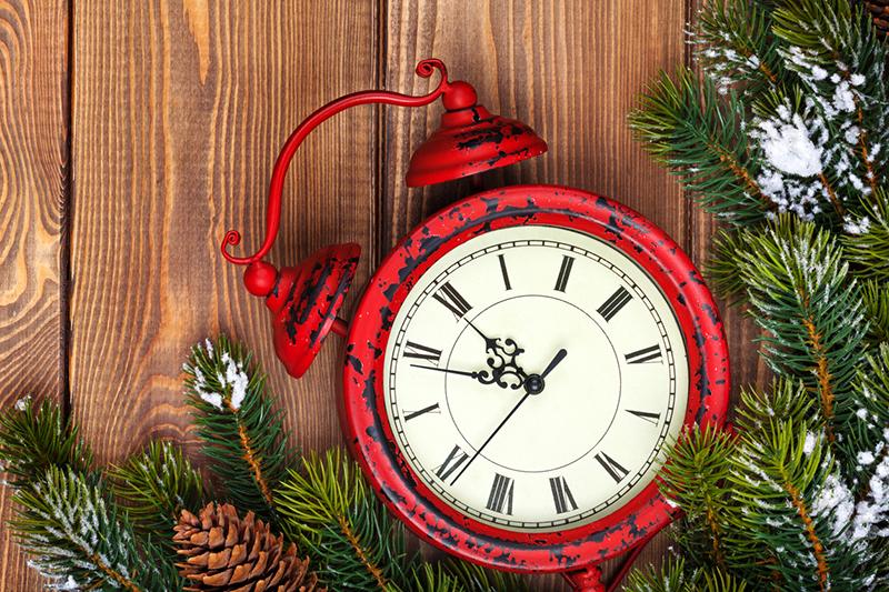 clock, time, time management, holidays, fir tree, pinecones, alarm clock