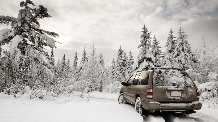 winter, snow, SUV, winter landscape, trees, preparing vehicles for the winter