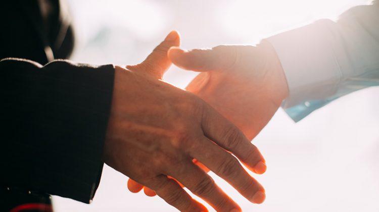 conversation, handshake, hands, business, businessman, businesswoman