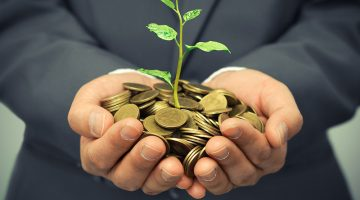 money, coins, plant, growth, startup capital, businessman