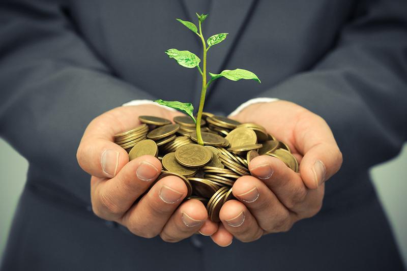 money, coins, plant, growth, startup capital, businessman