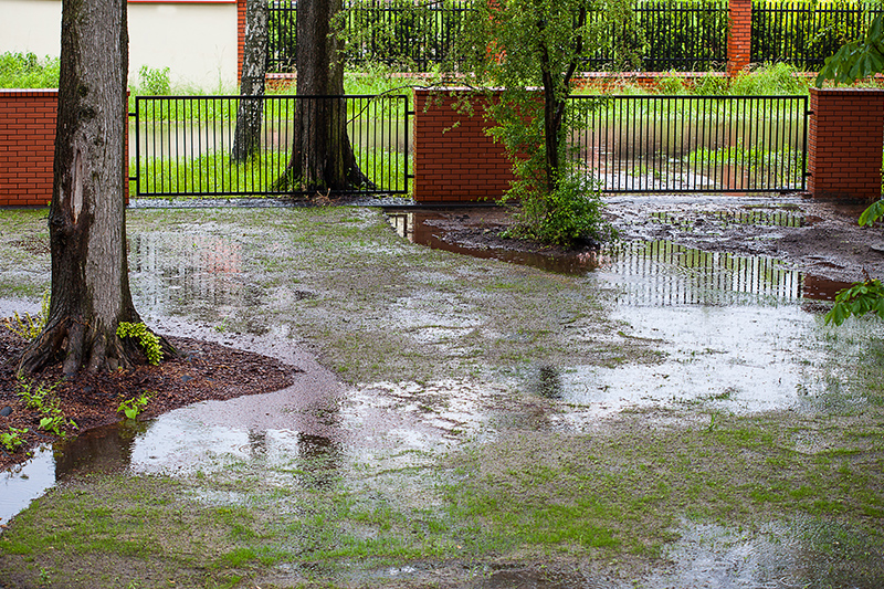 muddy backyard, water, runoff, flood