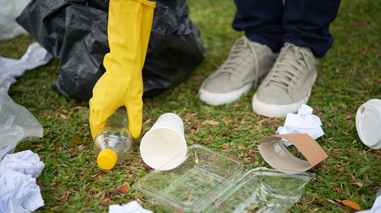 trash, litter, grass, site cleaning, maintenance, garbage
