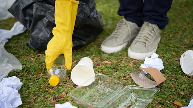 trash, litter, grass, site cleaning, maintenance