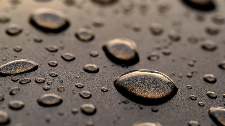 water beading, droplets, car, hood, paint
