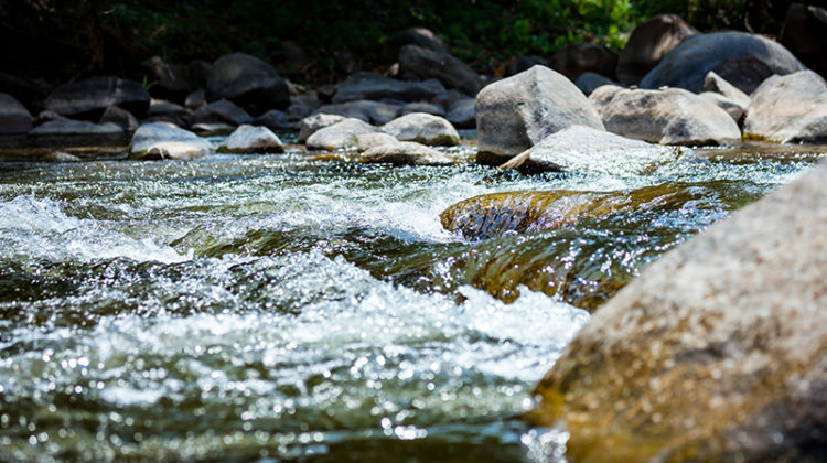 stream, green, water, river, rocks