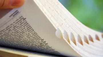 dictionary, words, jargon